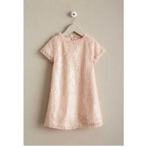 Chasing Fireflies Sequin Shift Dress Pale Pink